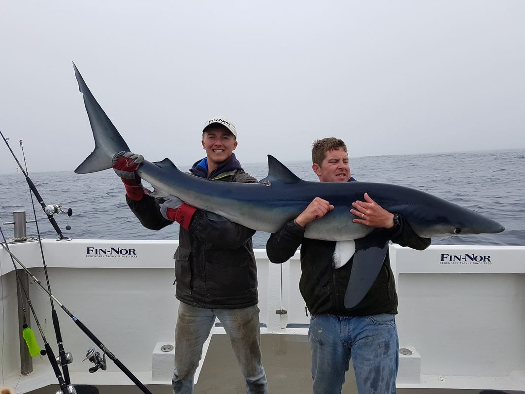 Scott with a nice Blue Shark on Bite Adventures in May